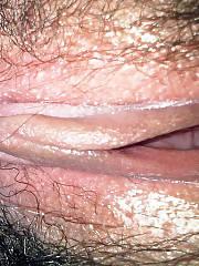Ambers hairy