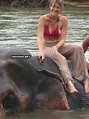 Amateur xxx pics of sweet wife liking vacation with husband in Thailand, In the midday they ride elephants and in the night they fuck like rabbits